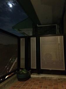 月夜@里山ビオトープ