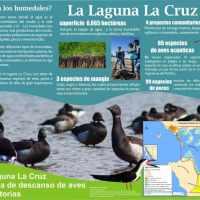 Sitio Ramsar Humedales de la Laguna La Cruz