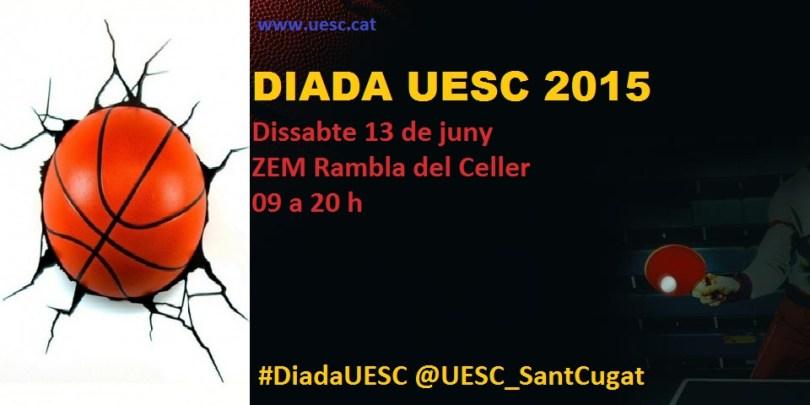 Cartell Diada UESC 2015