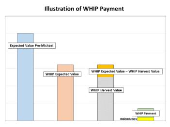 https://i1.wp.com/www.ugacotton.com/vault/file/3.png?resize=351%2C263