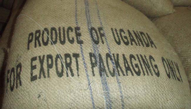 Uganda's Coffee export volumes have hit the highest level since 1991