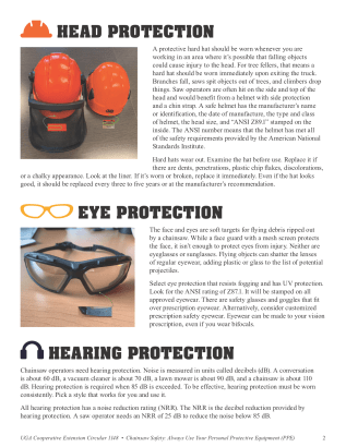 CHAINSAW SAFETY Always Use Your Personal Protective Equipment (PPE) page 2