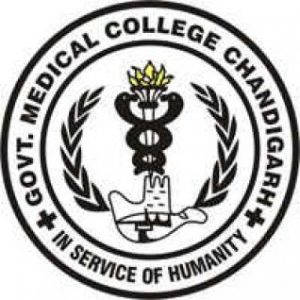 Jobs Opening for Assistant Professors in Government