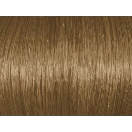Chestnut Blonde 7Br77