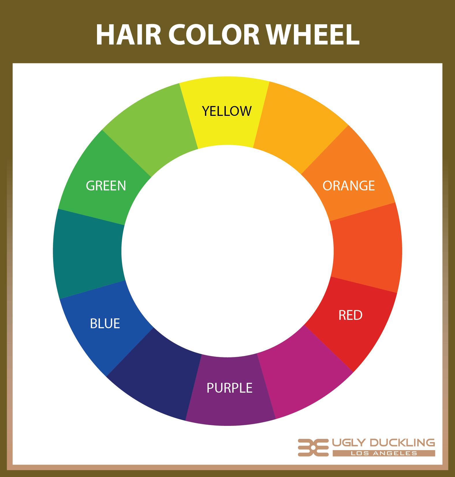 The Hair Color Wheel