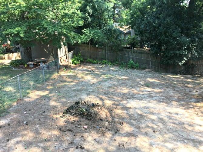 backyard-aerial-left