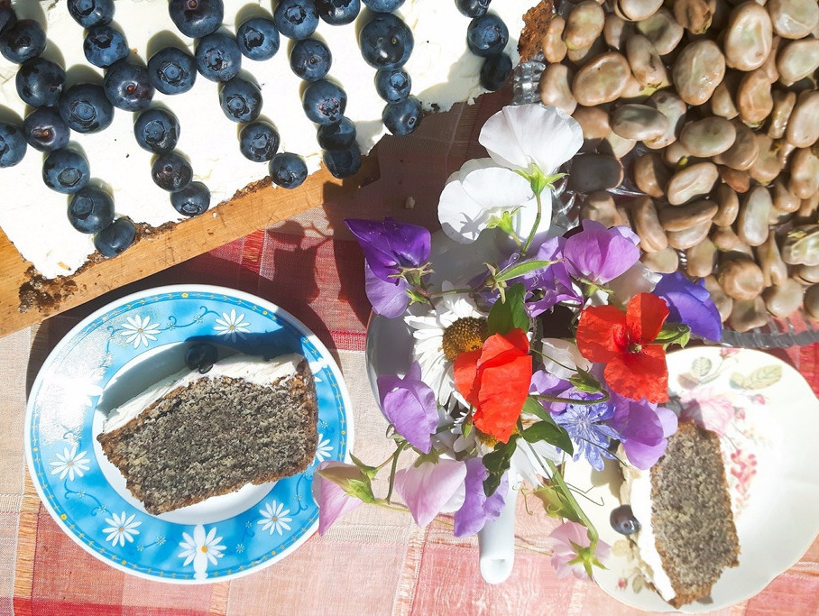 Przepis na ciasto z makiem, mascarpone i borówkami