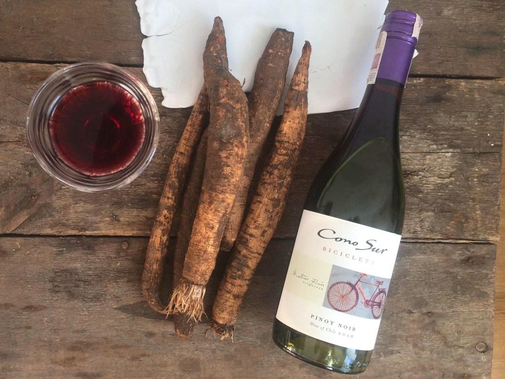 Food & wine pairing Cono Sur