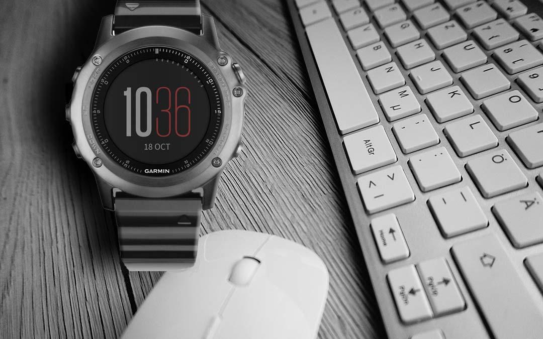 Garmin 010-01338-21 Smartwatch