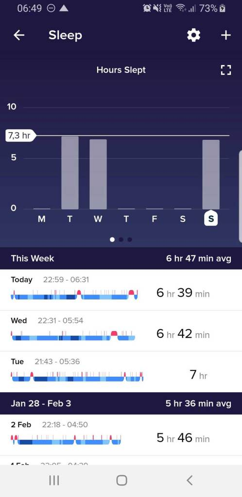 "Fitbit App Sleep Overview, ""Hours Slept"""