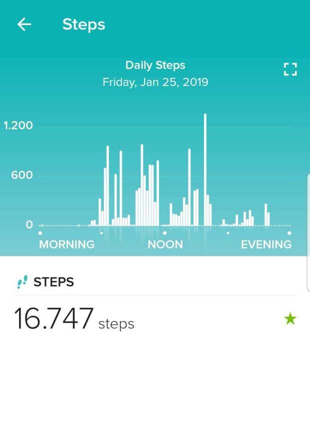 Fitbit App: Zurückgelegte Schritte eines Tages