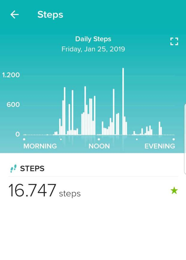 Fitbit App Steps Data for Single Day