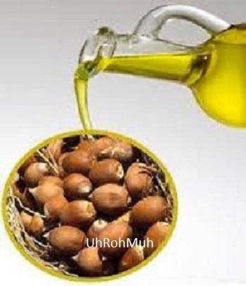 Organic Babassu oil