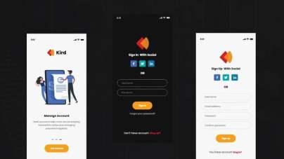 Kird Banking app- uifreebies.net