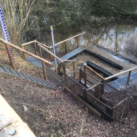 Handmatig aangelegde vispassage op locatie welke niet te bereiken is met machines – M.J. van Uijtert en ZN. - Aannemeningsbedrijf