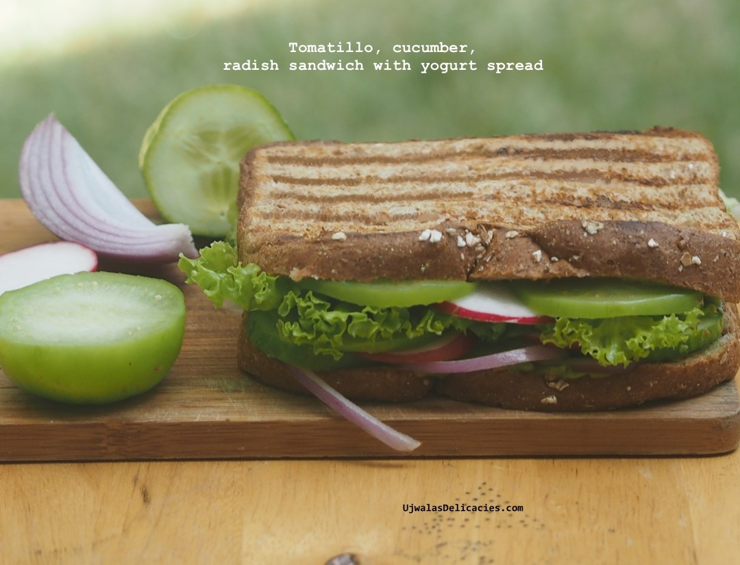 Radish, tomatillo panini with avocado yogurt spread