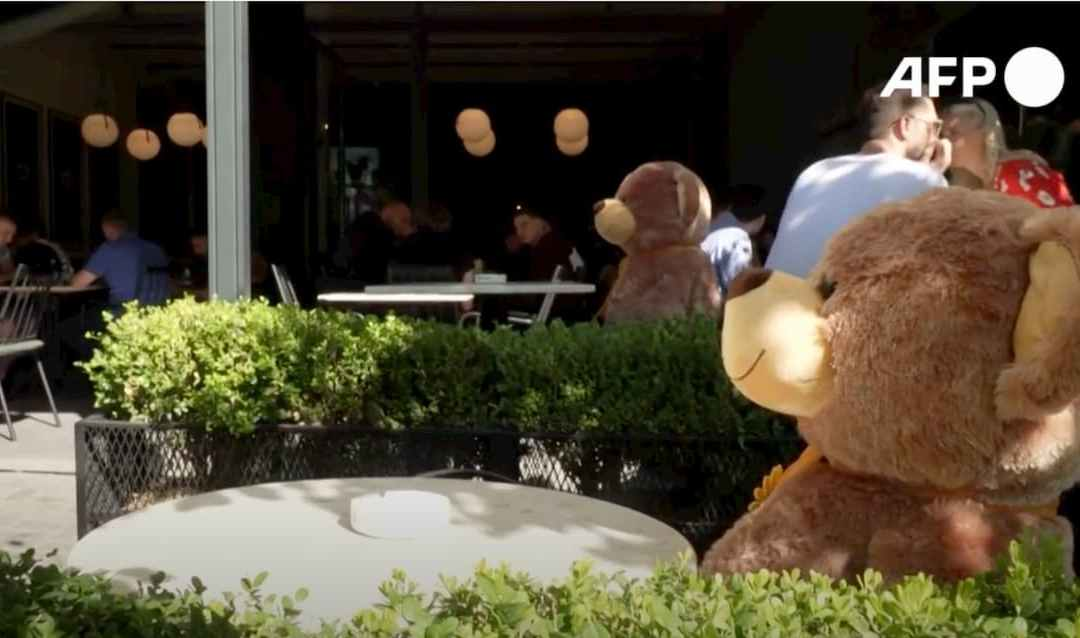 Video: Kosova cafe uses toy bears for distancing as virus measures return