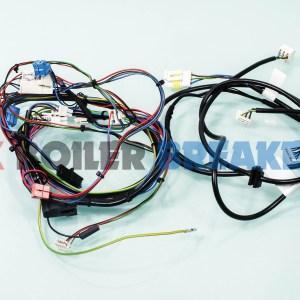 GlowWorm Wiring Harness 0020195584 GC – 41-019-20
