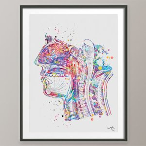 Human Head Cross Section Anatomy Watercolor Print Clinic Decor Respiratory System Dental Medical Art Science Mouth Nose Anatomy-153