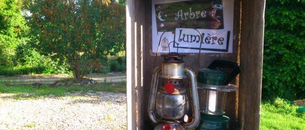 arbre_lumiere_2