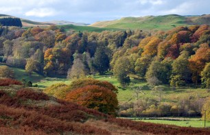 galloway autumn
