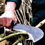 Best Billhook Guide