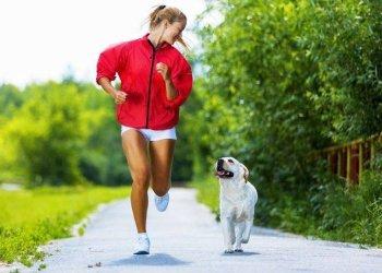 اركض من اجل حيوانك، سباق خيري لدعم الحيوانات الاليفة في اوكرانيا