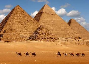 جولة على الصحافة المصرية