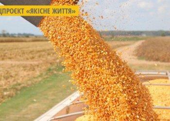 صادرات اوكرانيا من الحبوب