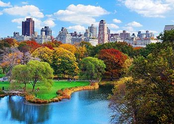 حدائق نيويورك تنبض بالحياة من جديد