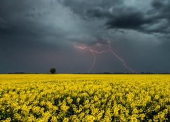 الطقس في اوكرانيا درجة الحرارة 30 وعواصف رعدية