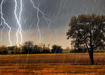 توقعات الأرصاد الجوية للأسبوع