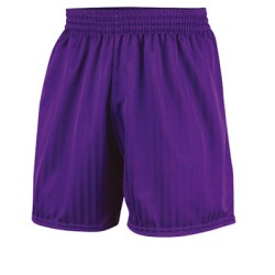 Prostar Omega Shorts (purple)