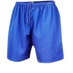Prostar Zodiac II Shorts (blue)