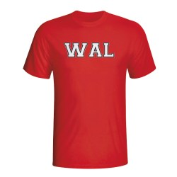 Wales Country Iso T-shirt (red)