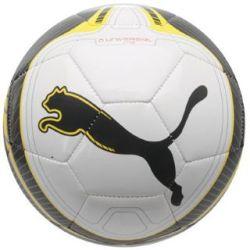 Puma Universal Ms Football (white)