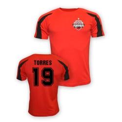 Fernando Torres Atletico Madrid Sports Training Jersey (red)