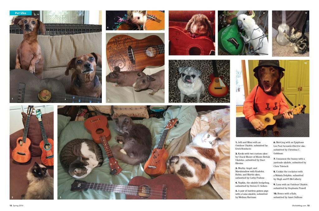 Uke Pets Ukulele Magazine