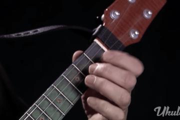 ukulele fretboard