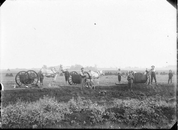 Tørvearbejde i Uldum Kær 1917