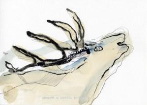 Hirsch | 2013 | Mischtechnik auf Papier | ca. 14 x 20 cm