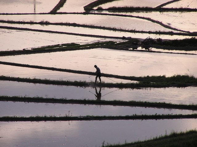 A Farmer works his fields in the waning sunlight of spring planting season