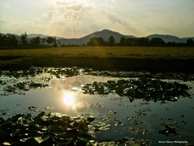 The sun sets over a pond at Wolseong Park