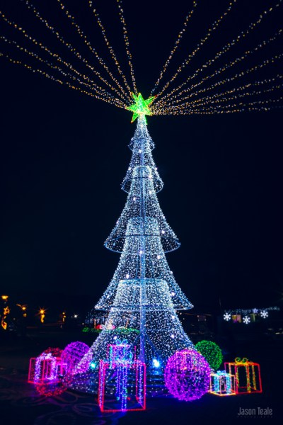 Ulsan Light Festival Christmas Tree