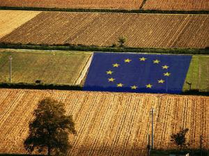 agricolture4 euAllargamento-dell-Ue-ai-Balcani-Occidentali-il-negoziato-agricolo_large