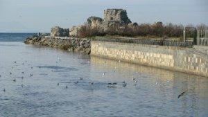 foce Sarno