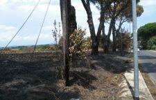Cronaca di ordinaria efficienza dopo un incendio che rischia di mandare in fumo i pali della Telecom