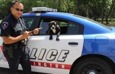 Giovane nero disarmato ucciso nel Texas. Il poliziotto sospeso subito dal servizio