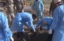 Iraq: agghiacciante scoperta di una fossa comune. 110 le vittime dell'Isis