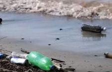 Onu: le microplastiche nell'acqua rischio limitato